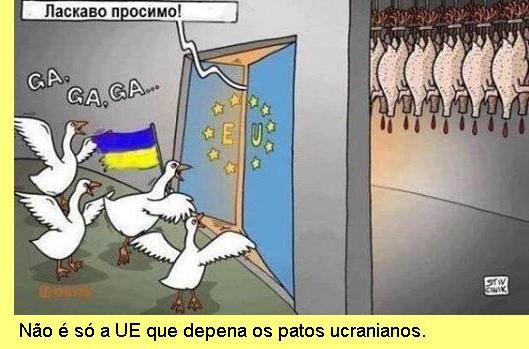 Patos ucranianos.