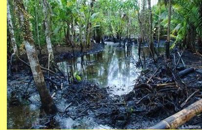A selva amazónica equatoriana depois de a Chevron por lá passar.