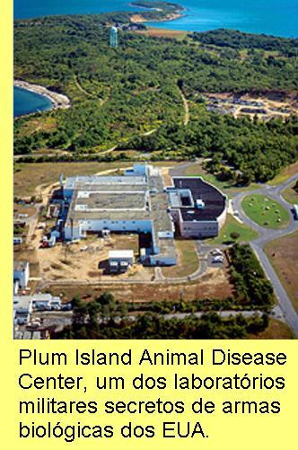 Plum Island, laborat